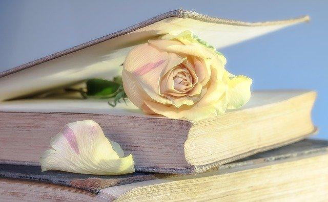 kniha s květinou